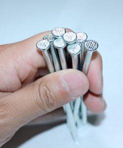 Common Wire Nails
