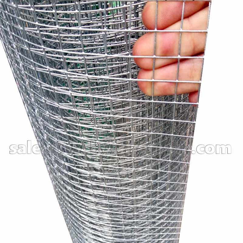 Welded wire mesh hardware cloth rabbit