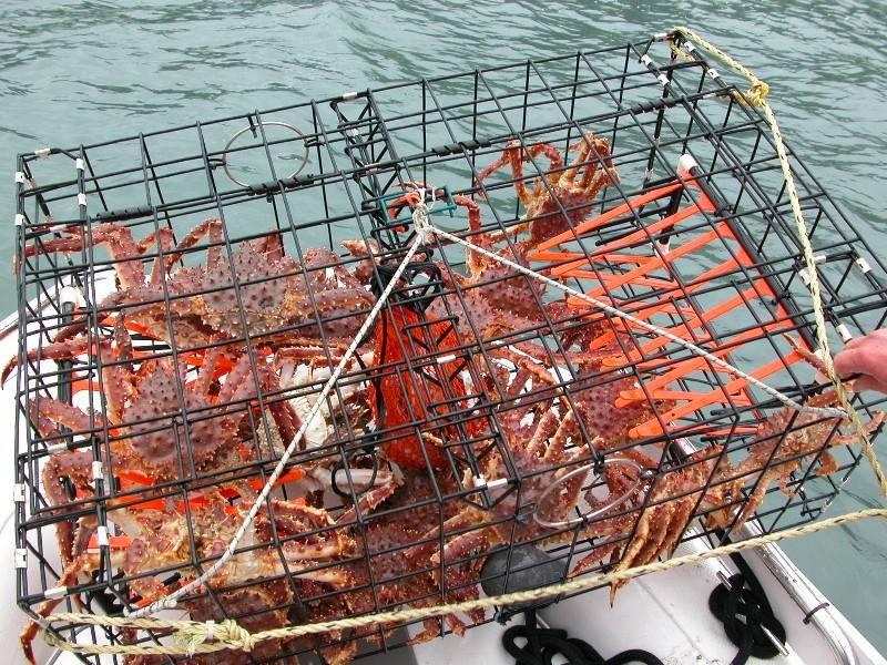 Aquaculture Trap Crab Trap Wire Lobster Traps Mesh